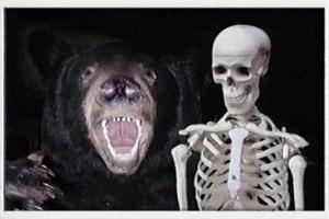Bearskeleton