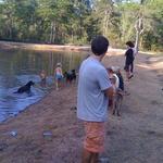 Pond_action