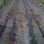 Drip_line