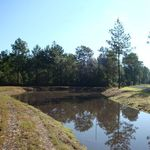Pond_view