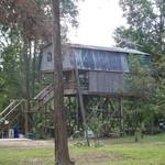 Danny Schaffer Camp