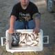 Pecan Grove Kills and Catches