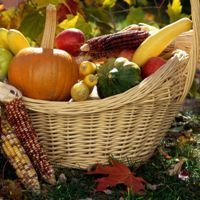Autumn-Harvest-Desktop-Wallpapers5.jpg