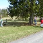 Kathy Mitchell, Mary Wymer and Kat Bemus raking and mulching