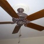 New Ceiling Fan.JPG