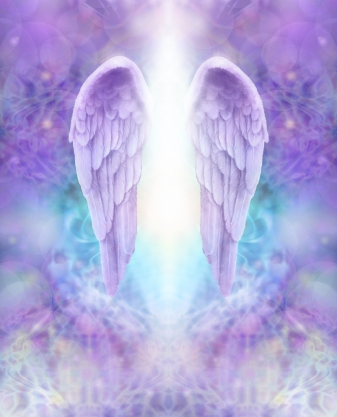 Angel Wings Lilac