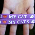 fing_cat_bracelet.jpg