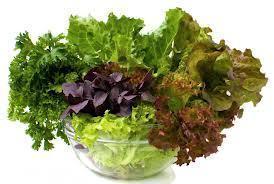 leafy_freens.jpg