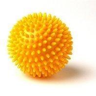 porcupine_ball.jpg