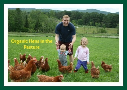 hens-in-the-pasture-.jpg
