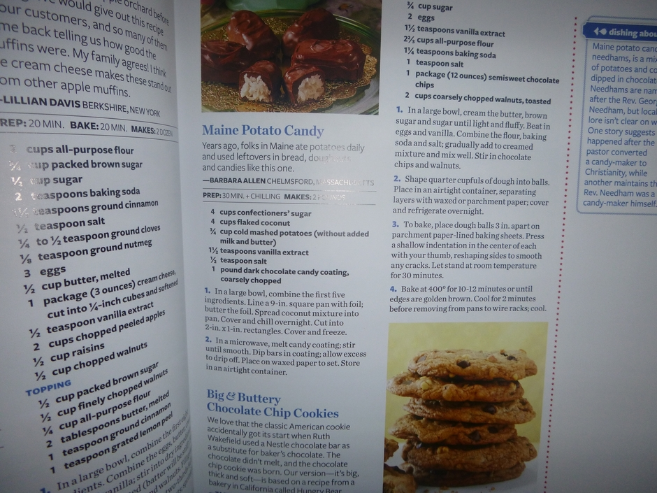 scarf and cookbook 007.JPG