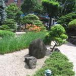 Garden photo.JPG