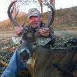Walt_deer