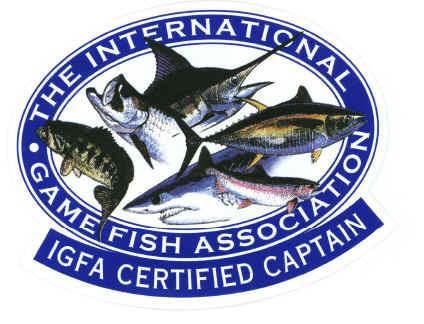 Fishing Charters - Fine Bait & Tackle