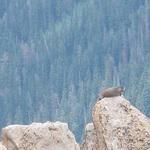 Colorado_trip_2012_118