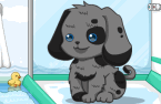 happy-cute-puppy.png