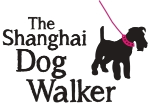 The Shanghai Dog Walker