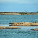 Georgian Bay 2013      (82).jpg