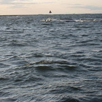 Rounding Caroline Island