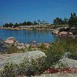 Dart Island - part of the McCoy's