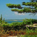Dart Island
