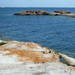 _Georgian_Bay_2011___102_.jpg