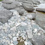 _Georgian_Bay_2011___104_.jpg