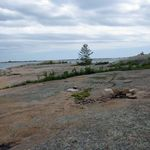 _Georgian_Bay_2011___159_.jpg