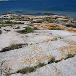 _Georgian_Bay_2011___200_.jpg