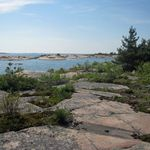 _Georgian_Bay_2011___223_.jpg