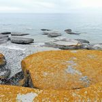 _Georgian_Bay_2011___226_.jpg