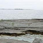 _Georgian_Bay_2011___343_.jpg