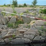 _Georgian_Bay_2011___368_.jpg