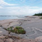 _Georgian_Bay_2011___372_.jpg