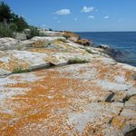 _Georgian_Bay_2011___39_.jpg