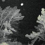 _Georgian_Bay_2011___94_.jpg