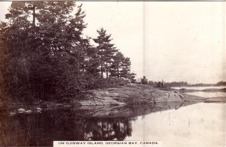 On Ojibway Island