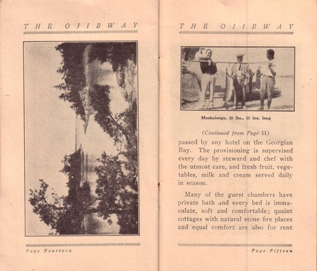 Brochure pages 14 and 15