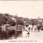 Woodwards Plant Point au Baril