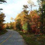 Payne's Road