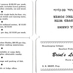 Brints Wallet Card front and back