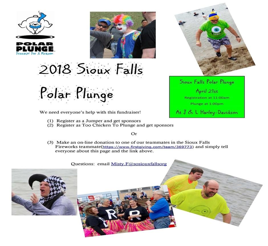 Polar Plunge 2018 website.jpg