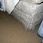 Flood_25
