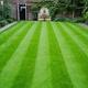 HLS Garden & Grounds Maintenance