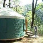 Keystone_yurt