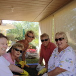 Desert Pointe Garden Club
