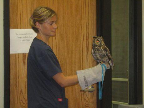June 2009 Meeting - ISU Wildlife
