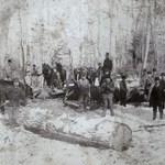 The Logging Era