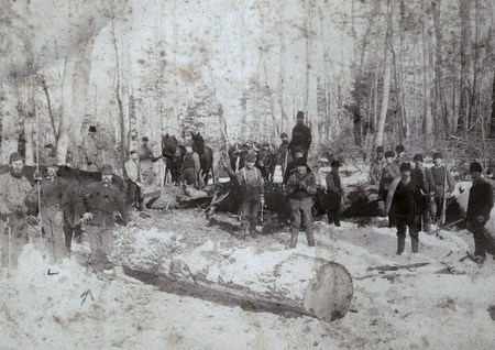 The Logging Era