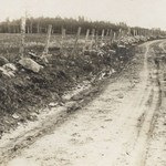 Old Thomson Road